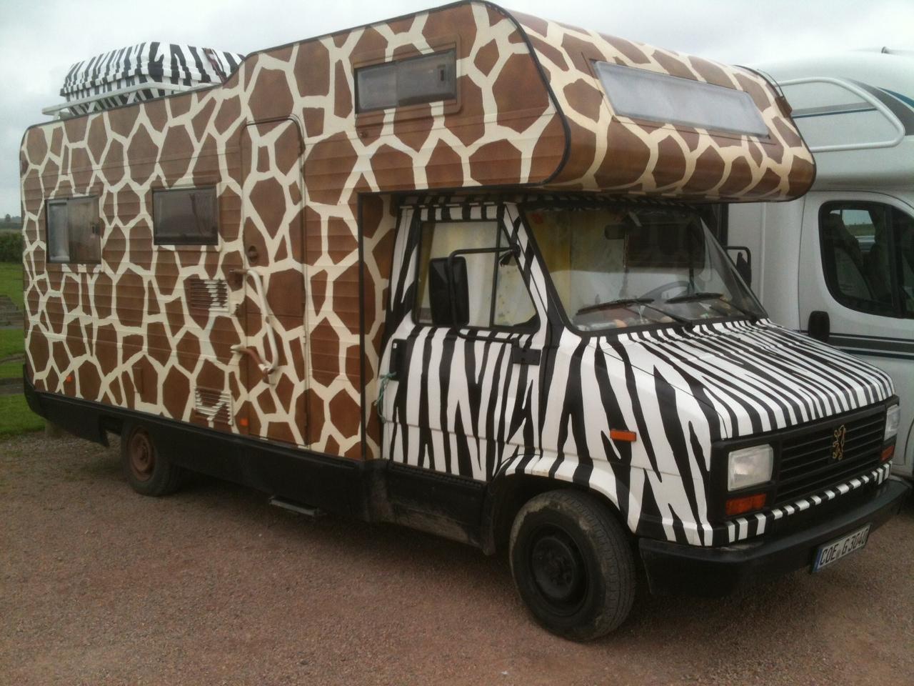 Giraffe Zebra Van